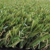 urbangrass