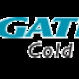 Gati Kausar India Ltd