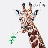 Ecoafriq