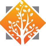 Springtree Group ,LLC