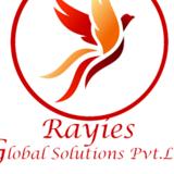 Rayies Global Solutions