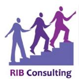 RIB Consulting Pvt Ltd.