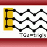 TGs Formula