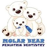 Molar Bear Pediatric Dentistry - Houston