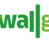 Wall Grass Integral Ltd