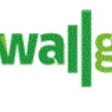 Wall Grass Integral Ltd