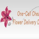 Same Day Flower Delivery Dallas TX