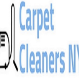 Carpet Cleaner Near