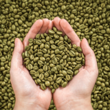 GreencoffeeX
