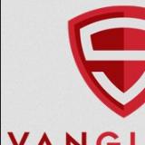 Vanguard Synergy Digital Media Marketing Group