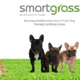 Smart Grass USA