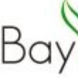 Bay Leaf Organic