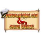 Virtual George Website Design & Ecommerce