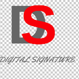 The Digital Signature Web Designing, Digital Marketing & SEO