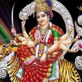 Pt. Yogi Raj Shastri ji