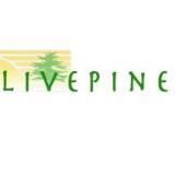Live Pine