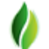 Manufacturers of Organic Essential Oils in India
