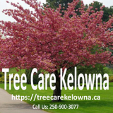 Tree Care Kelowna